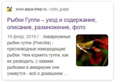 Разметка Article google
